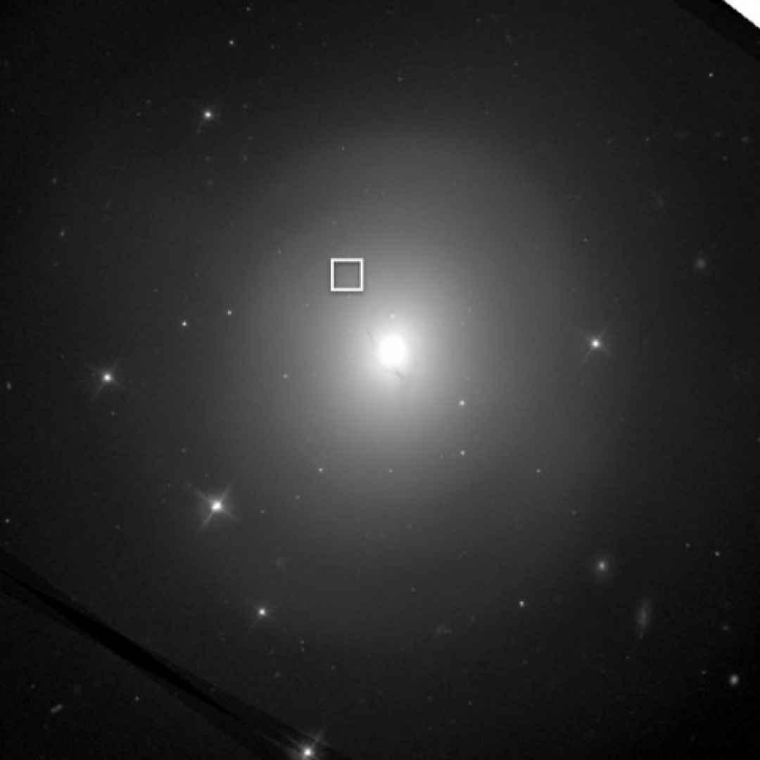 kilonova  onde gravitazionali