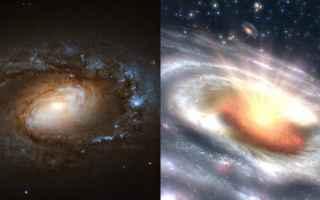 quasar  galassie  buchi neri